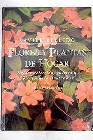 FLORES Y PLANTAS DE HOGAR
