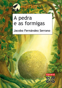 A PEDRA E AS FORMIGAS